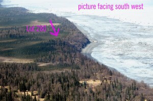 land sales, gray cliff land for sale, Kenai Peninsula land for sale