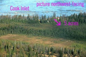 land sales, Kenai Peninsula real estate, buildable lot for sale, gray cliff land for sale
