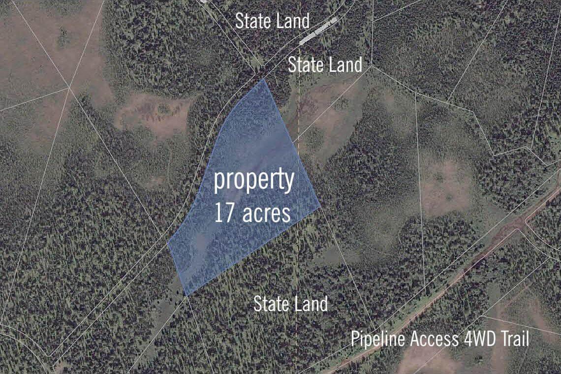 Alaska matanuska susitna county skwentna -  Gray Cliff Land For Sale Kenai Preninsula Land For Sale Alaska