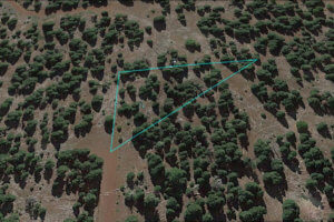 california pines land for sale